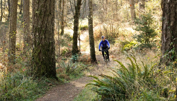 Biking at Alsea Falls, in Alsea, Oregon