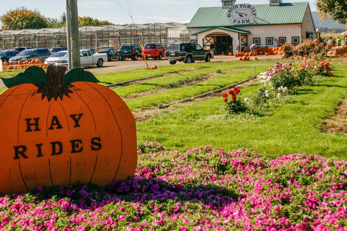 Davis Family Farm, Corvallis, Oregon