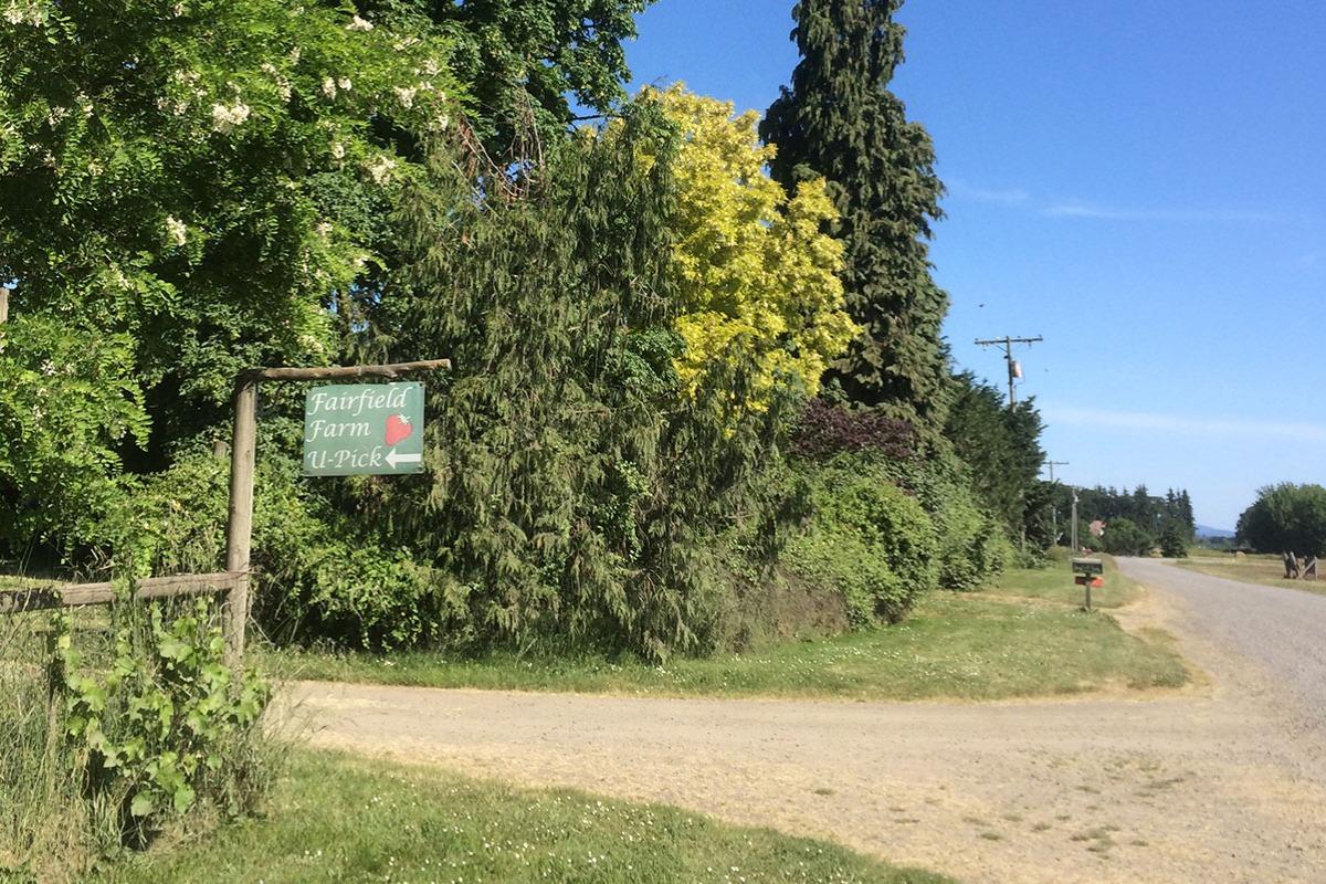 Fairfield Farm Cottage - Driveway