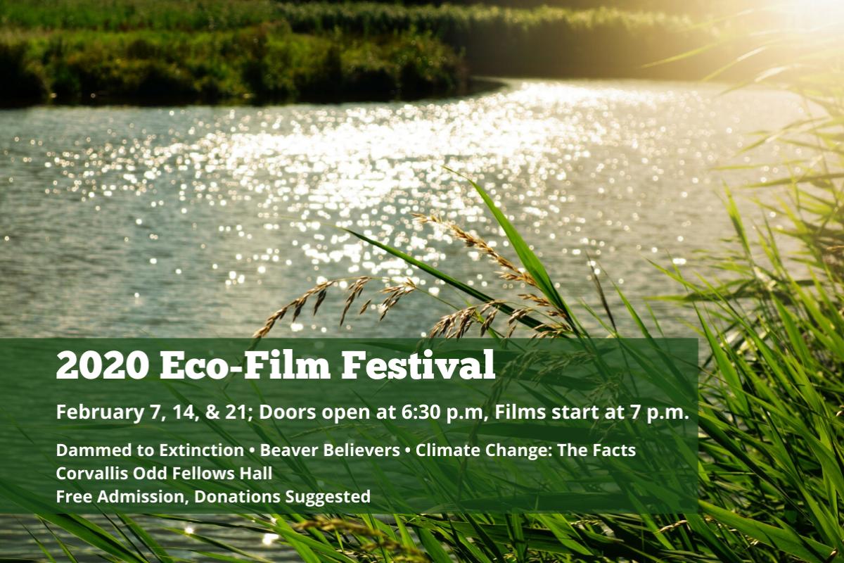 2020 Eco-Film Festival at the Corvallis Odd Fellows Hall in Corvallis, Oregon