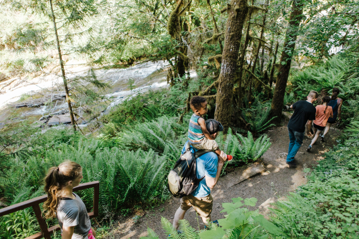 Alsea Falls, Alsea, Oregon - Friends & family hike through beautiful wooded trails lined with ferns, along the Alsea River.