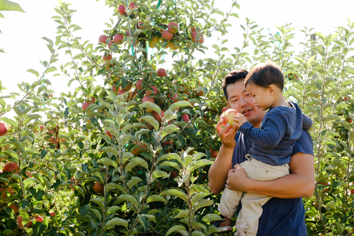 A family enjoys a day in the orchard at the Peoria Road Farm near Corvallis, Oregon