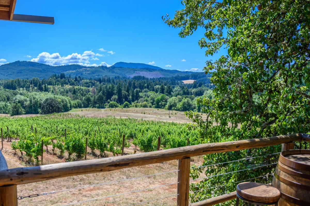 Lumos Winery, Philomath, Oregon