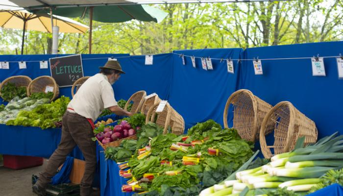 Shopping at the Corvallis Farmers Market. Photo by Isabella Medina.