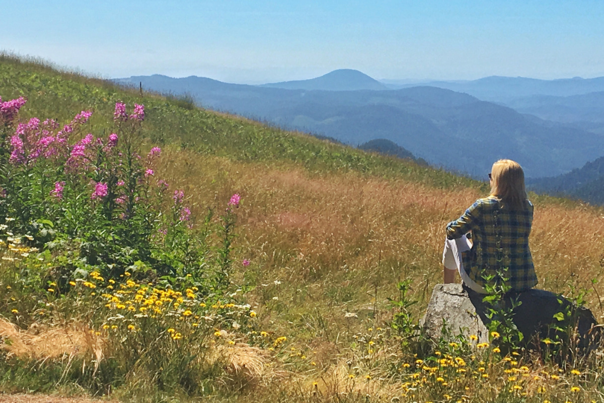 A woman, surrounded by wildflowers, looks out from the meadow on Marys Peak, taking in the views of the Coast Range.