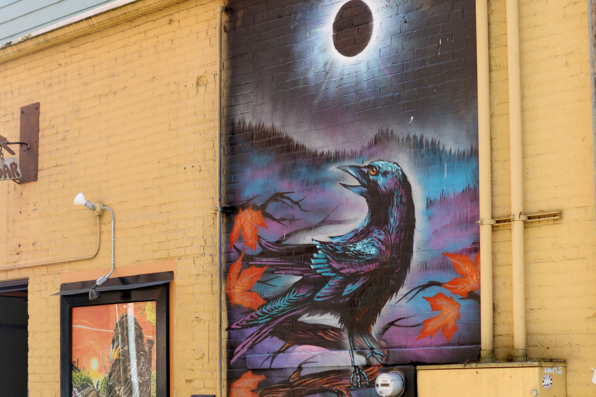 Corvallis Mural showing a crow under the eclipsed sun.