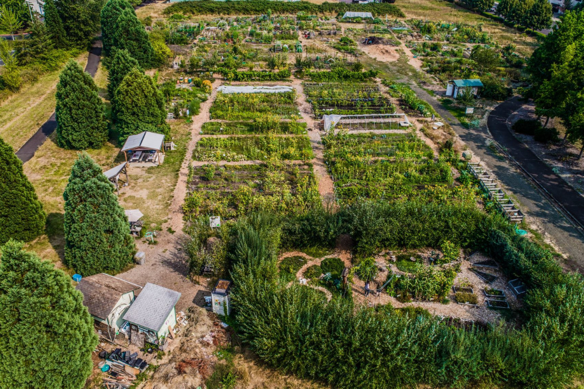 SAGE Garden, Corvallis, Oregon - An aerial photo of the entire one-acre garden - Image via the Corvallis Environmental Center's Facebook