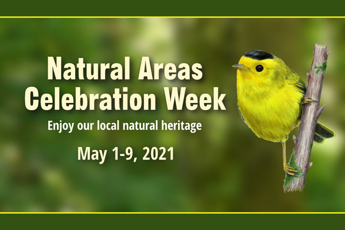 Natural Areas Celebration Week 2021 Promotional Graphic showing a yellow bird on a branch against a green nature background with text reading 'Natural Areas Celebration Week, Enjoy our local natur