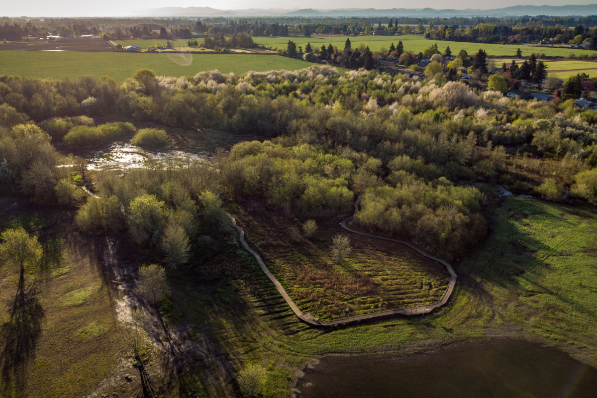 Jackson-Frazier Wetlands, Corvallis, Oregon, Drone photo from overhead showing entire park and most of the boardwalk.