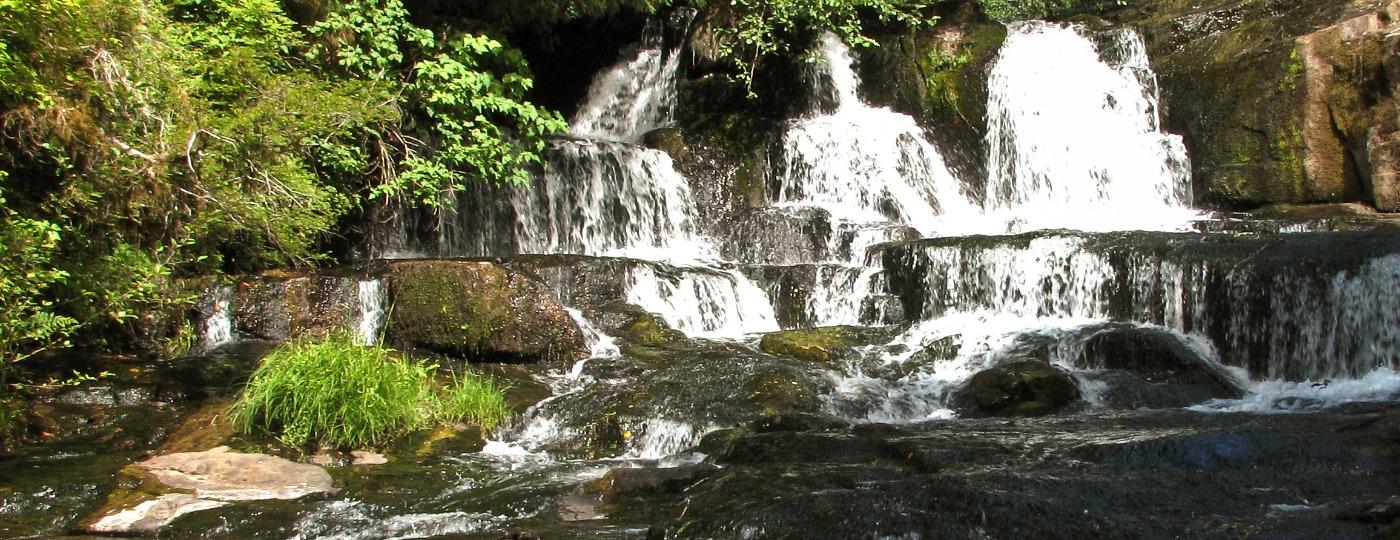 Alsea Oregon Map.Exploring Alsea Falls By Bicycle Visitcorvallis Com