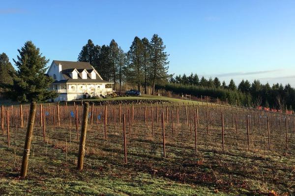 Bluebird Hill Farm B&B in Monroe, Oregon