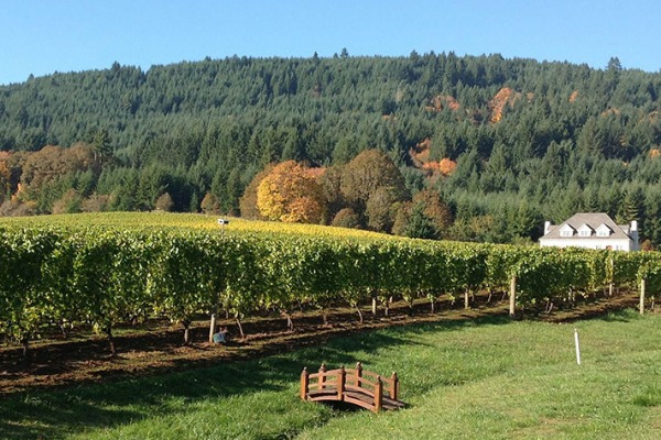 Cardwell Hill Cellars in Philomath, Oregon