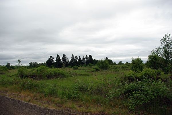 E.E. Wilson Wildlife Area