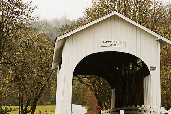 Harris Covered Bridge in Philomath, Oregon, by Lainey Morse
