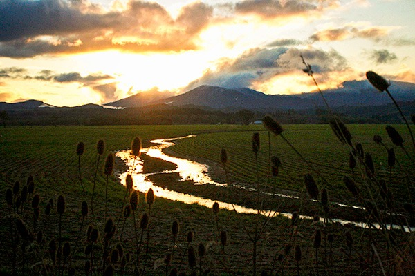 Marys Peak near Corvallis, Oregon, by Lainey Morse