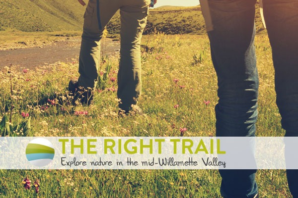 The Right Trail